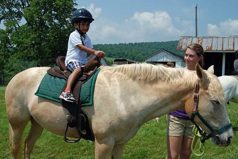 Pony ride in east coast