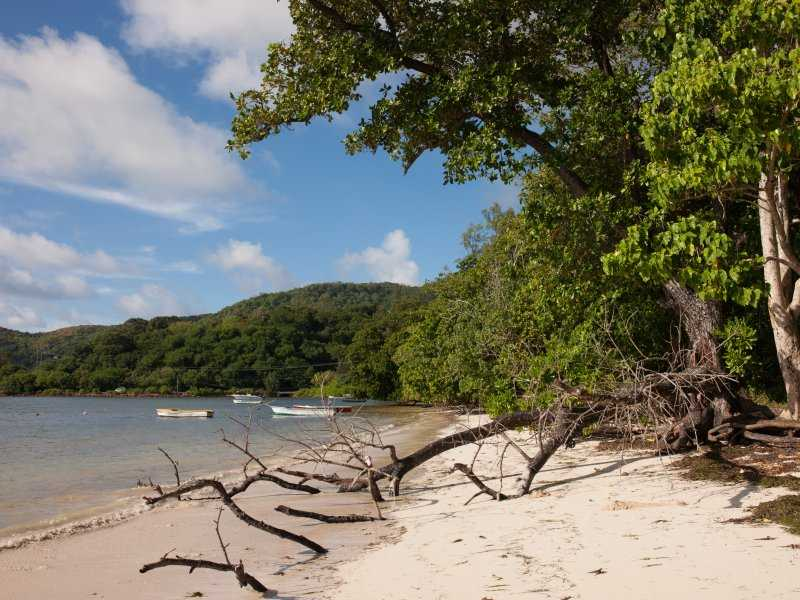 Anse Madge, Beaches in Praslin Island