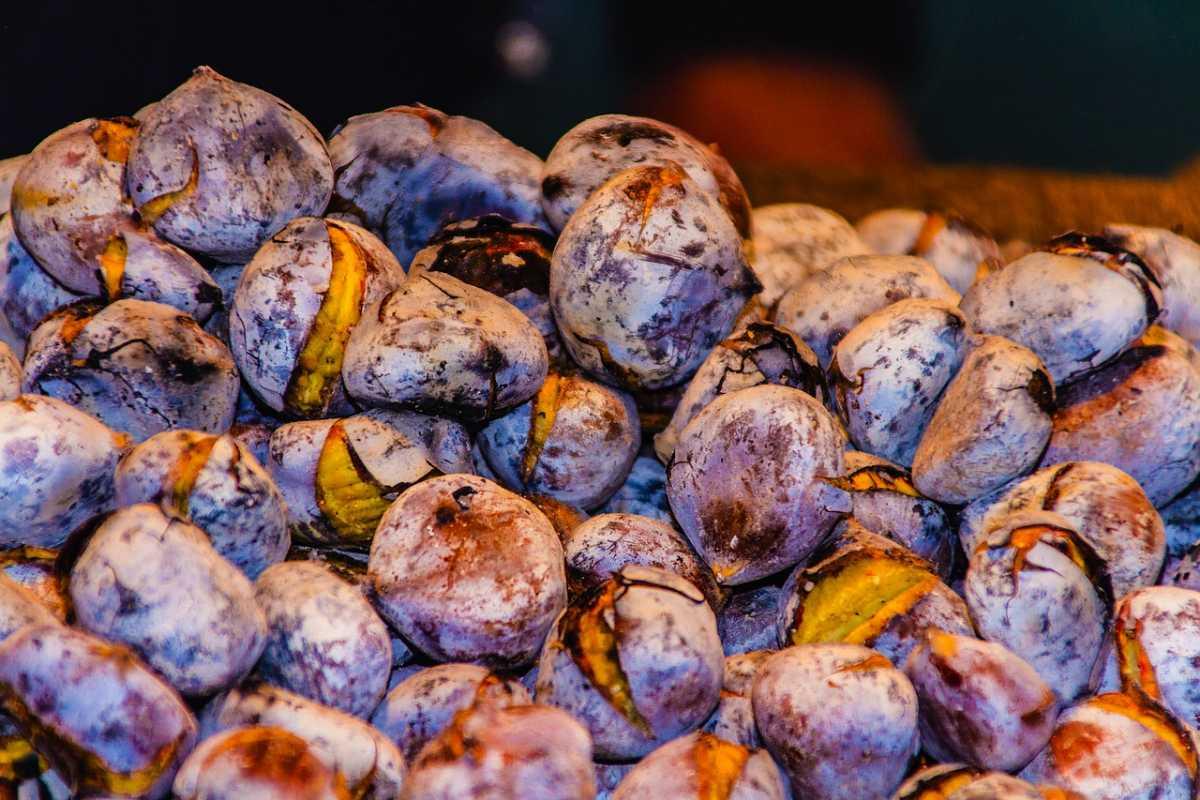 Roastes Chestnuts, Hong Kong