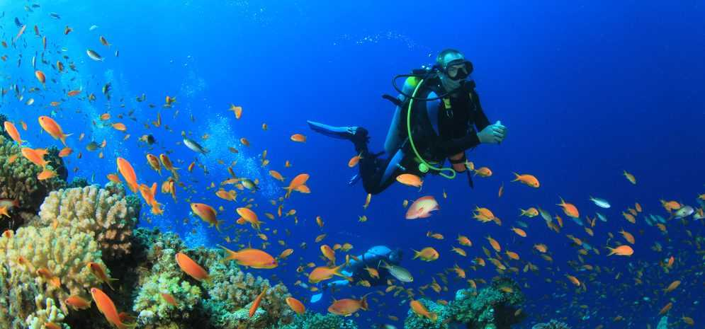 Scuba Diving in Maldives in April