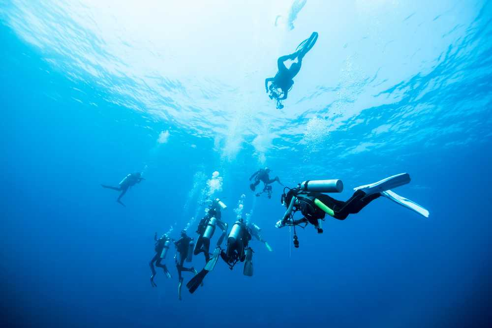 Diving in the Similan Islands