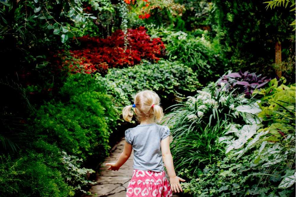 Tour the Botanical Gardens