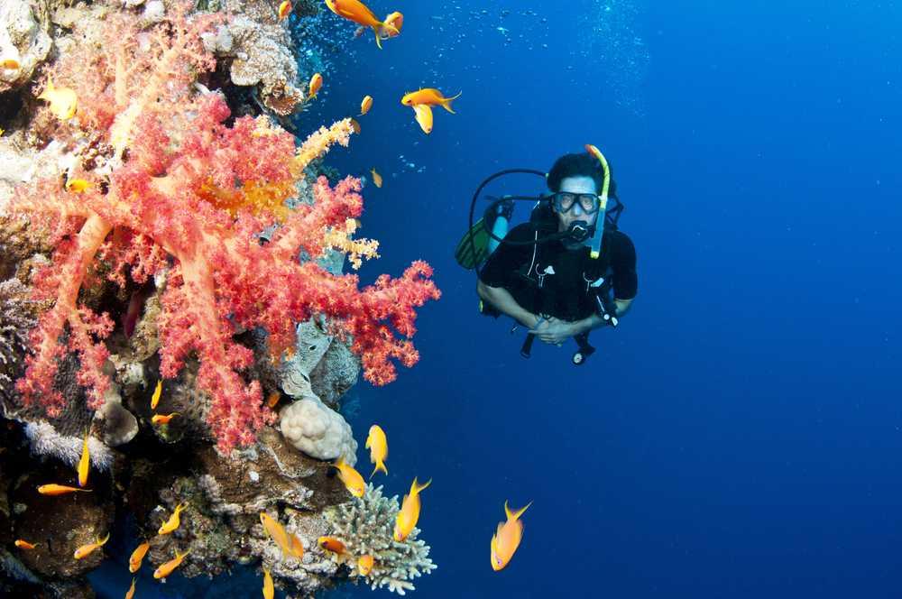 Koh Kood Scuba Diving