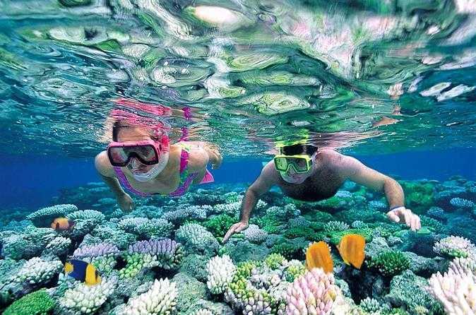 Snorkelling in Praslin Island Seychelles