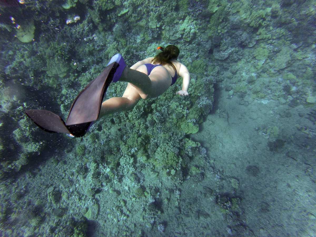 Snorkelling in Perhentian Islands