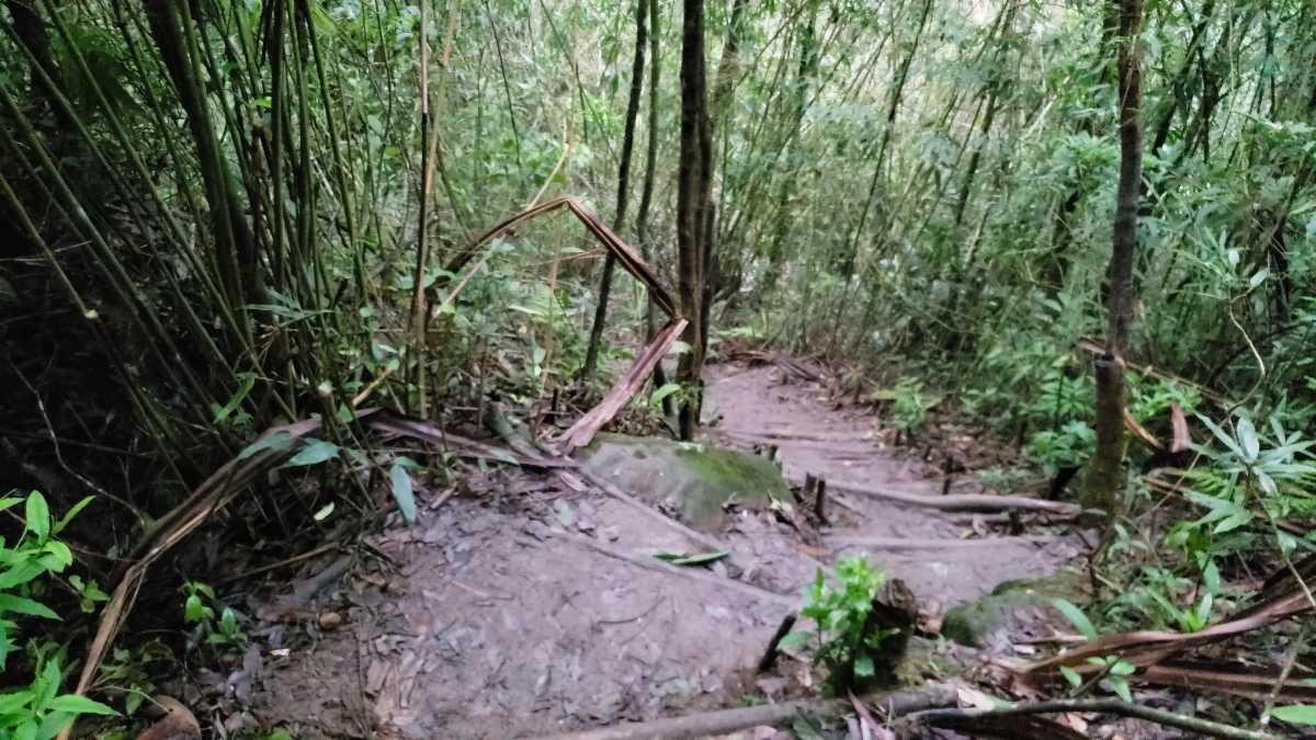 Trek at Wei Sawdong