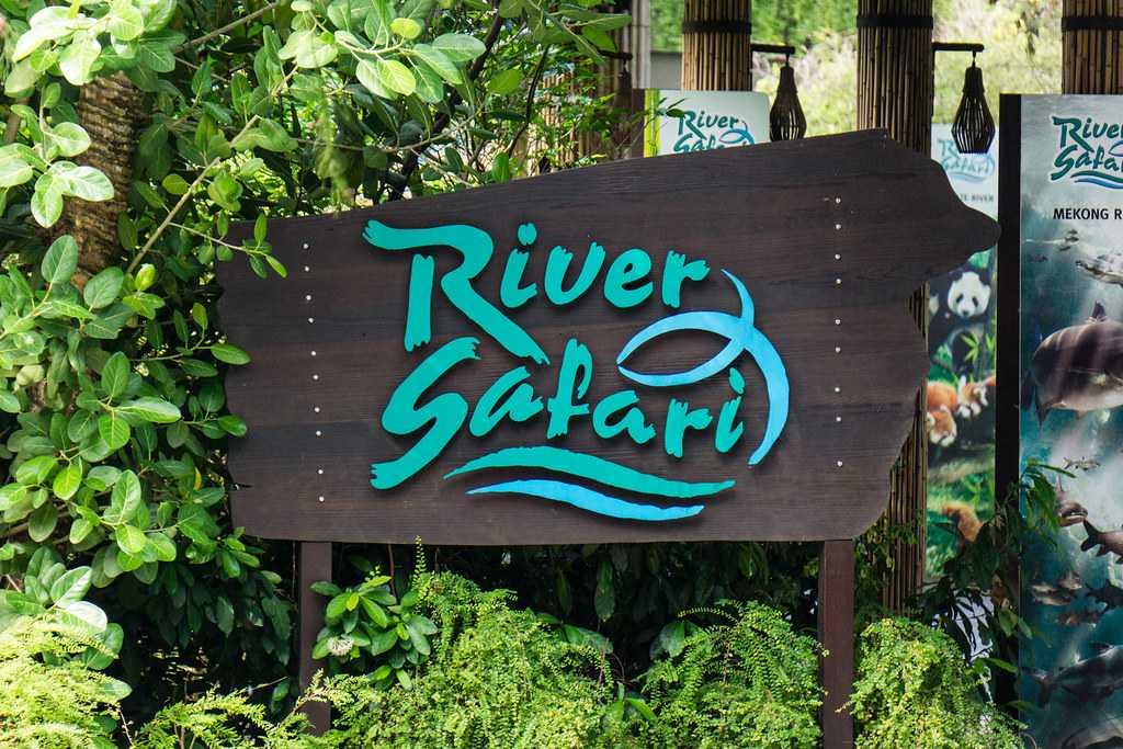Singapore River Safari, Wildlife in Singapore