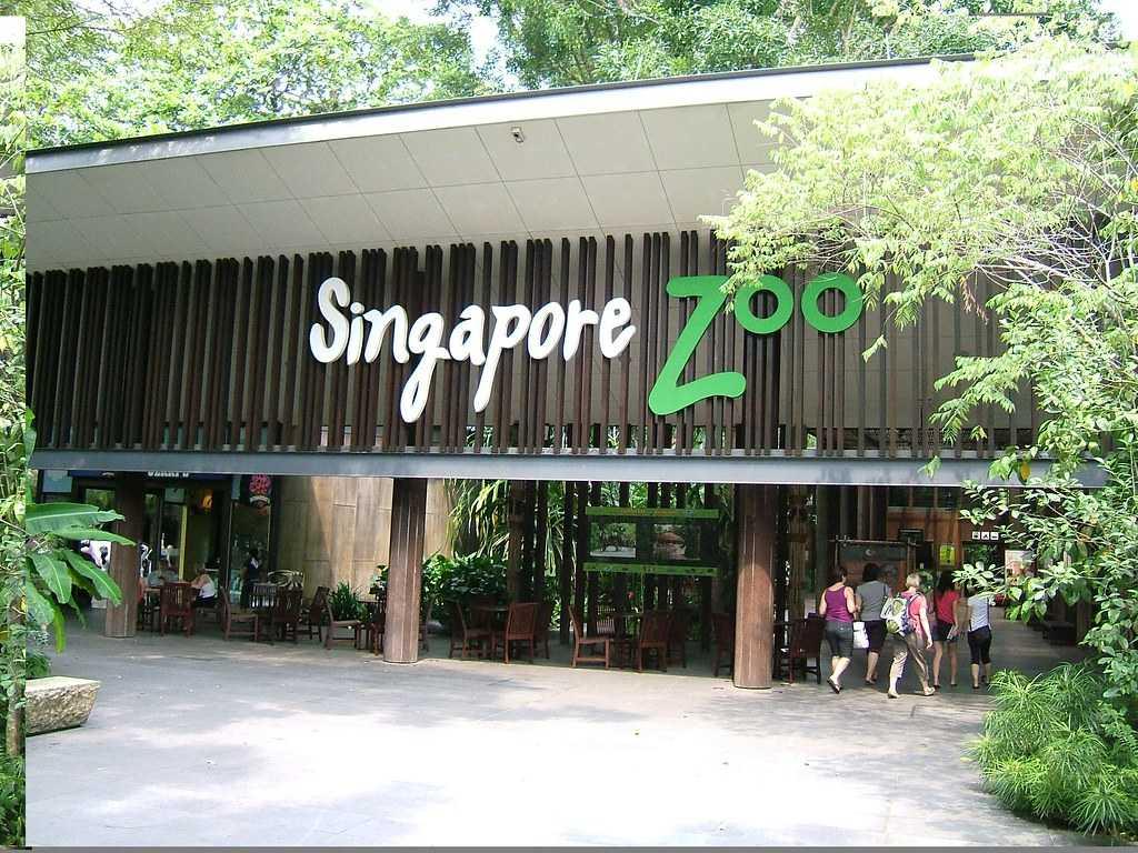 Singapore Zoo, Wildlife of Singapore