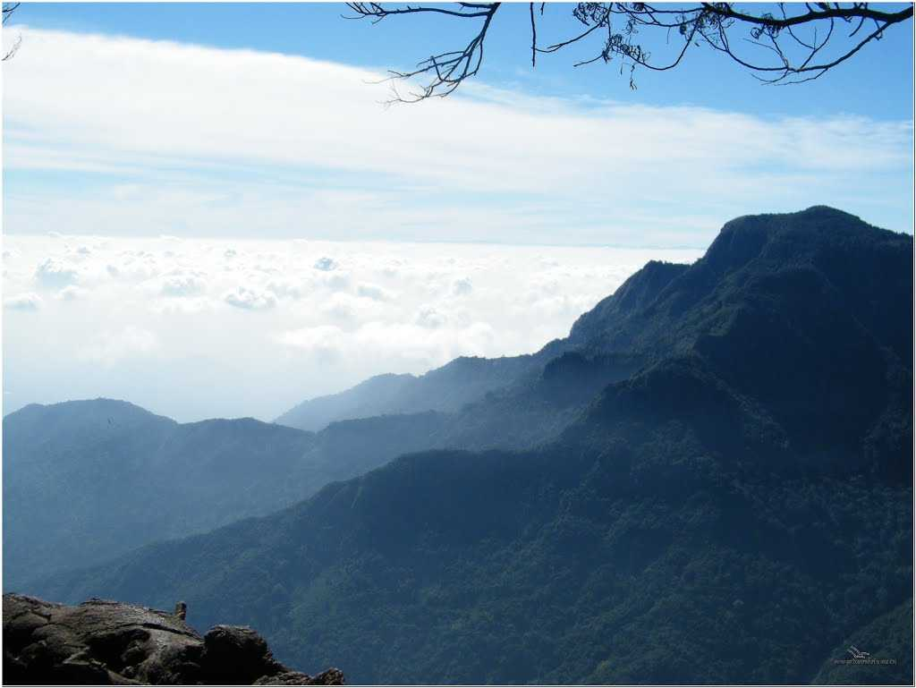 Best Places near Bangalore for Summers, coonoor
