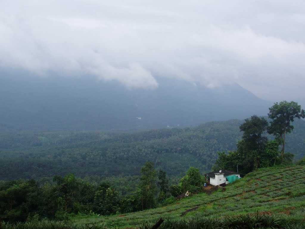 Thumpachi Kalveri Samuchayam