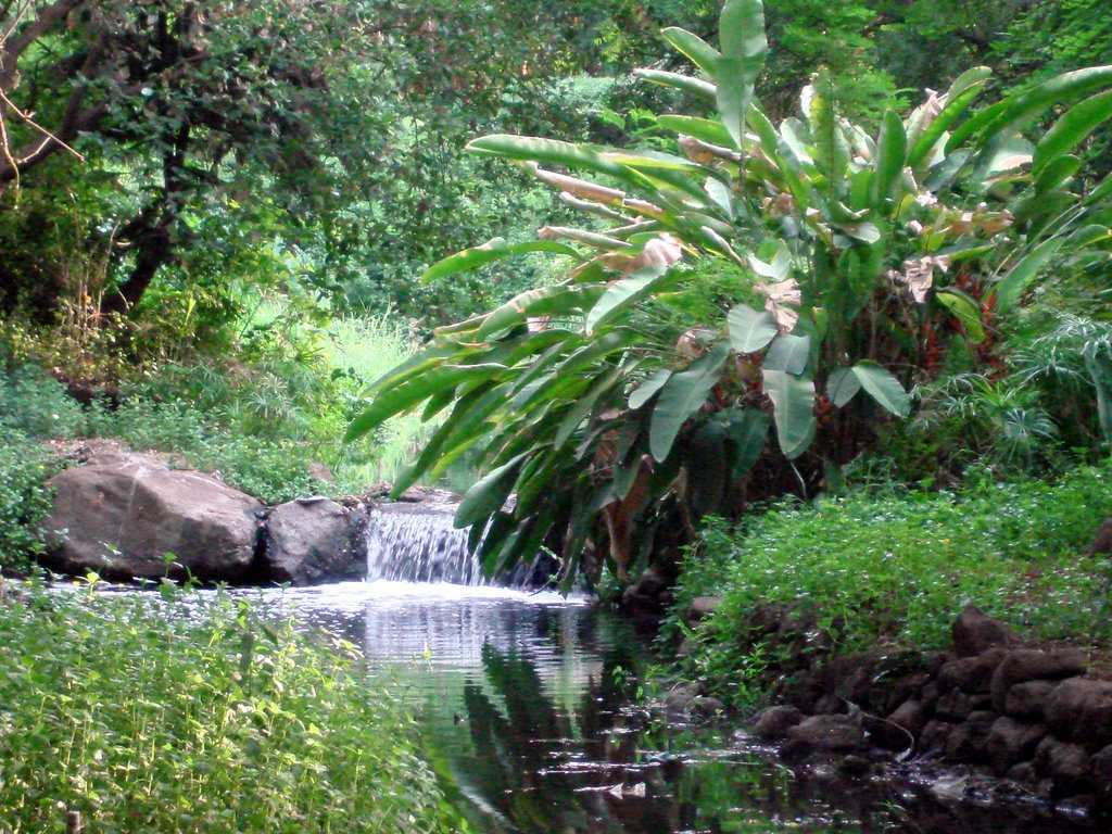 Places To Visit In Pune Sightseeing And Things To Do In Pune