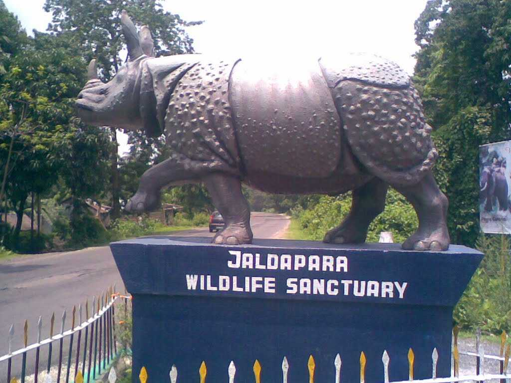 A visit to a wildlife sanctuary
