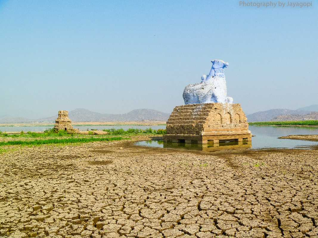 Image result for no water in mettur dam