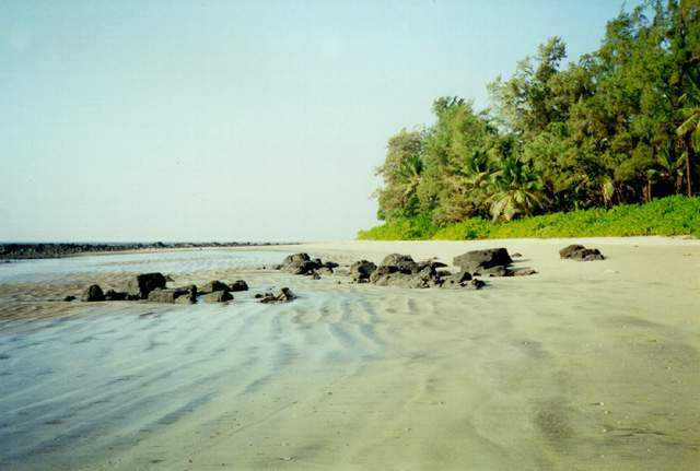 Resorts Near Kihim Beach