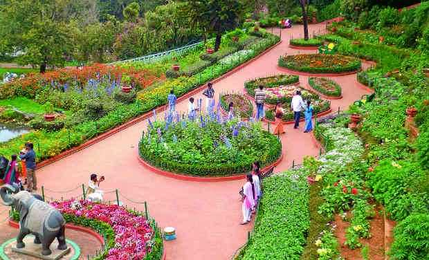 ooty botanical gardens ooty botanical gardens photos and